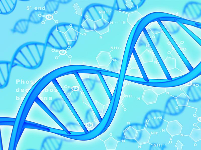 染色体臂间倒位的治疗方法